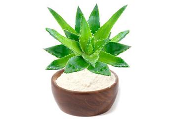 Aloe vera v prahu 200:1 BIO
